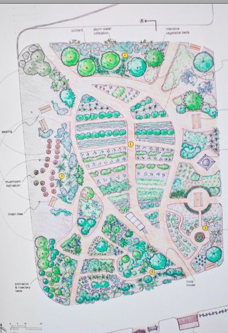 124 best images about landscape sketch on pinterest for Plan permaculture