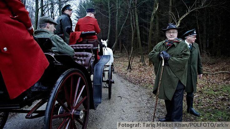 KONGEJAGT. CITAT Kongehuset kan miste ældgamle jagtprivilegier - mitFyn.dk - Samfund - Indland D. 25/3 2015