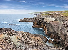 Mistaken Point Ecological Reserve Fossil Bed Area
