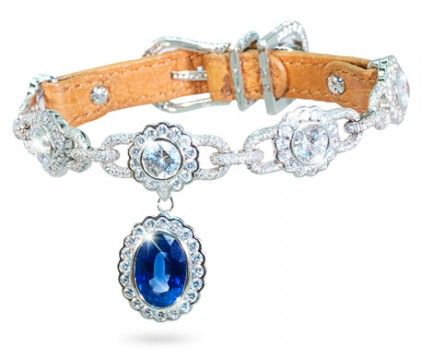 Amour de la Mer  Dog Collar  8.5 carat sapphire with 600 diamonds 18K white gold with ostrich leather band. $899,000