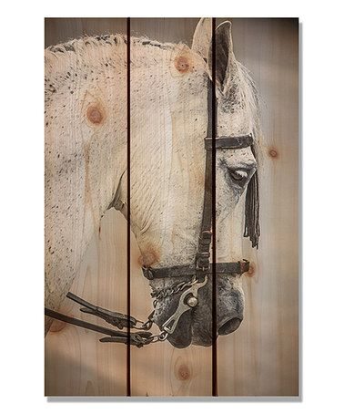 This Noble Steed Inside/Outside Wall Art is perfect! #zulilyfinds