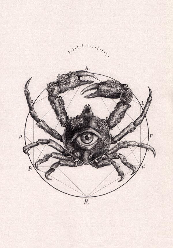 Peter Carrington est un artiste illustrateur dessinateur qui travail son coup de crayon depuis le pays de la Rose, l'Angleterre. Il aime représenter dans ses créations des animaux, mais pas que. On remarque que dans la plupart de ses dessins, on y retrouve des formes, des signes astrologiques, des…