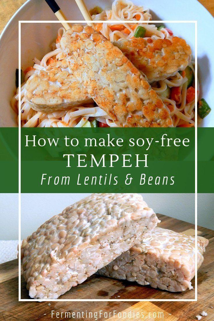 Lentils Chickpeas And Bean Tempeh Recipe Lentils Soy Free Vegan Tempeh