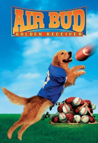 Watch Air Bud: Golden Receiver (1998) Online, Story of a golden retriever who can play football..