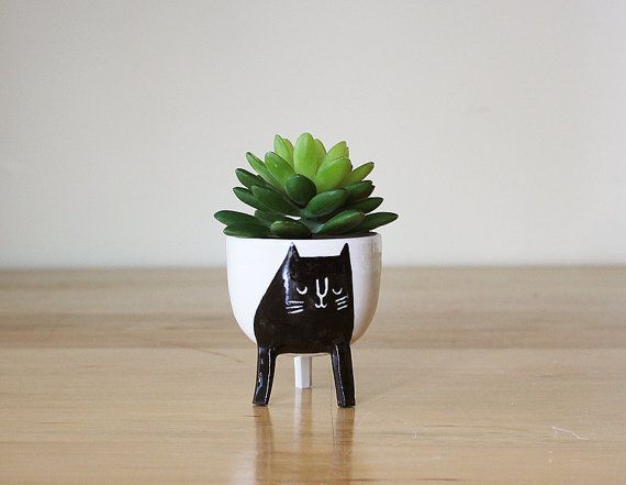 Really awesome Etsy listing at https://www.etsy.com/pt/listing/235275901/small-three-legged-planter-with-black