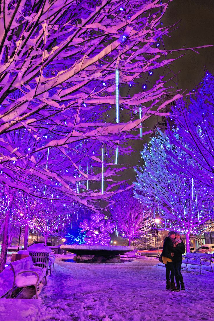 83 Best Christmas Amp Holidays In Asheville Images On