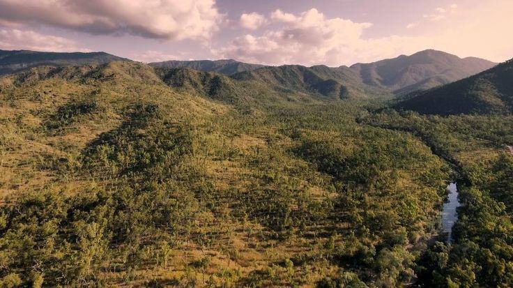 Bluewater Creek, Queensland, Australia Bluewater Range Track, Forestry Rd