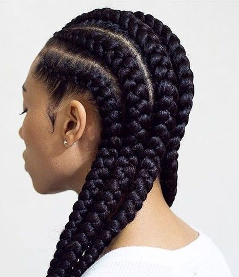 19 Concepts of Braids Hairstyles for Pure Hair