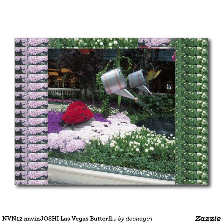 NVN12 navinJOSHI Las Vegas Butterfly Park LadyBugs Postcard