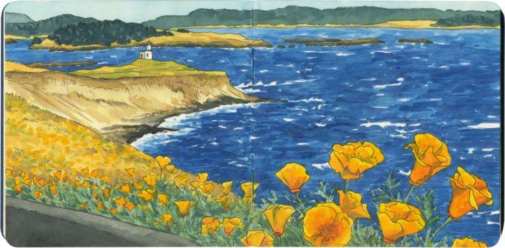 Cattle Point, San Juan Island, Washington, at the height of poppy season.