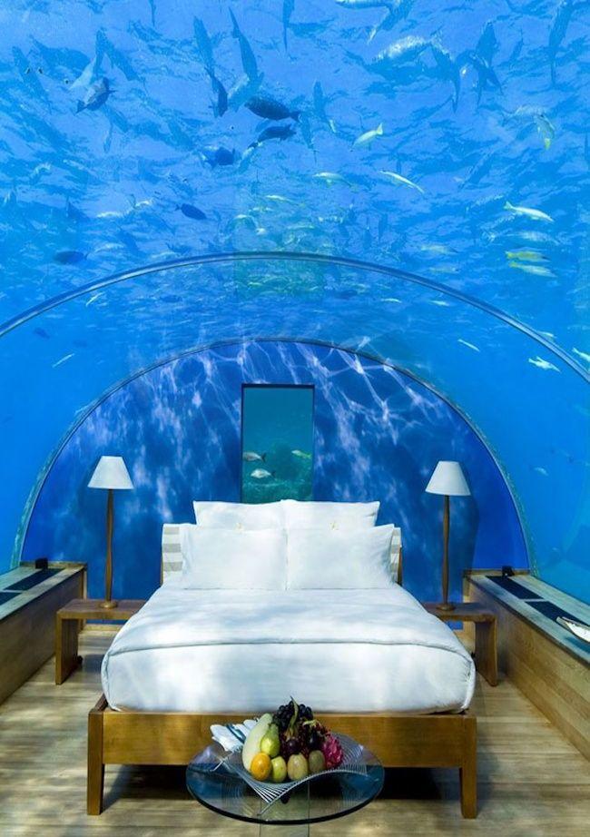 Underwater Restaurant for Wealthy Honeymooners - Maldives