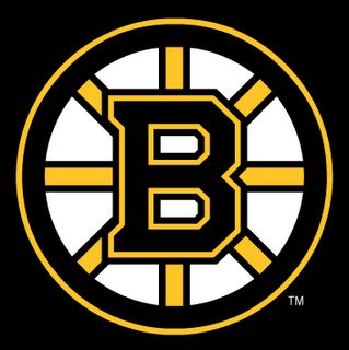 Go Bruins!! #Boston #bruins #nhl #hockey