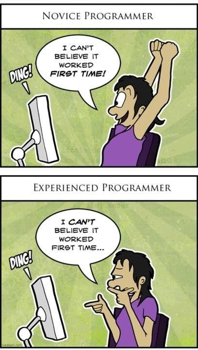 Novice vs Experienced Programmer