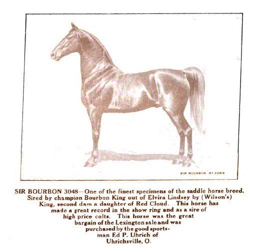 Sir Bourbon (GFM portrait) by Bourbon King