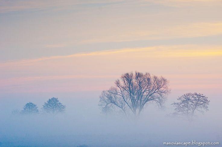 Landscapes of Mazovia | Krajobrazy Mazowsza: Cool morning #2