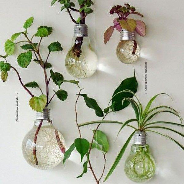 20 Uses for Light Bulbs | Photos | HGTV Canada