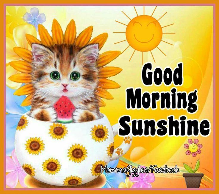 Image result for good morning sunshine images