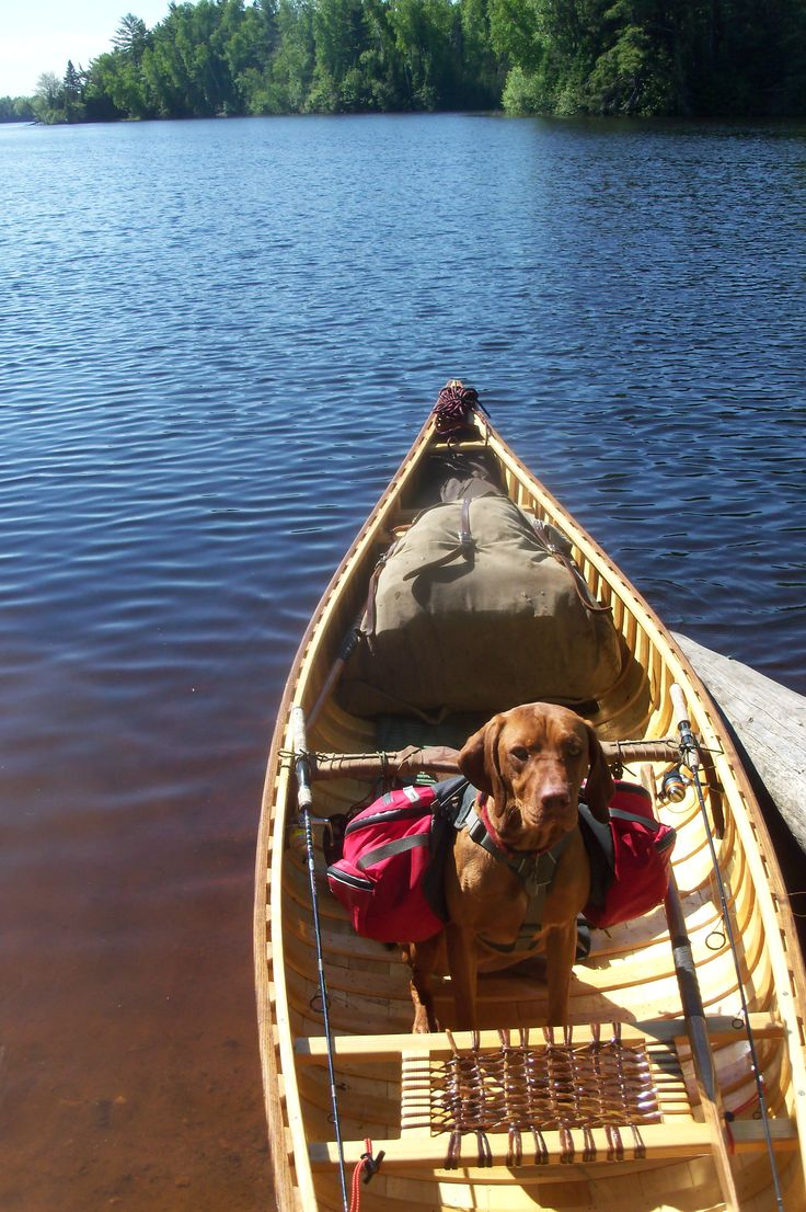Pin by Scott RR Haskell on Canoeing Canoe and kayak