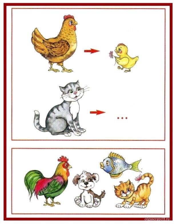 (2015-08) Kylling og killing