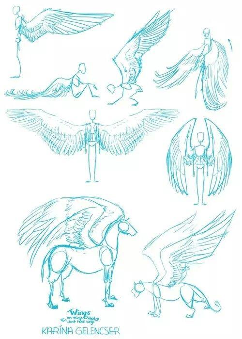 Flügel ♡