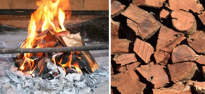 La biomasa forestal son los productos energéticos y la energía que se derivan de la biomasa que se genera en las diferentes actividades que se producen en las masas forestales, ya sean poda, tala, limpieza y cuidado de bosques, etc., por tanto no se habla de los residuos agrícolas ni de otras maneras de obtener biomasa.    Las características especiales de la obtención responsable y sostenible de esta materia prima.