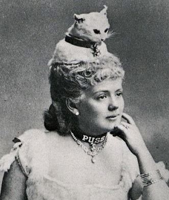 Taxidermy cat hat  (an unusual Victorian fashion statement).