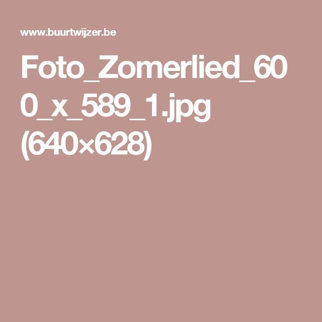Foto_Zomerlied_600_x_589_1.jpg (640×628)