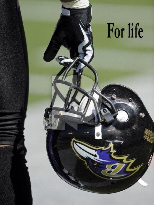 Ravens love