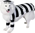 """This is a great costume for pairing. The owner could go as a prisoner as well, creating a """"chain"""" (leash) gang, or the owner could be the cop. For women this is your perfect opportunity to be the sexy cop while still having your furry friend by your side."""