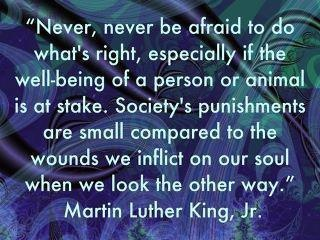 """""""Never, never be afraid to do what's right, especially if the well-being of a person or animal is at stake. Society's punishments are small compared to the wounds we inflict on our soul when we look the other way."""" Martin Luther King, Jr."""