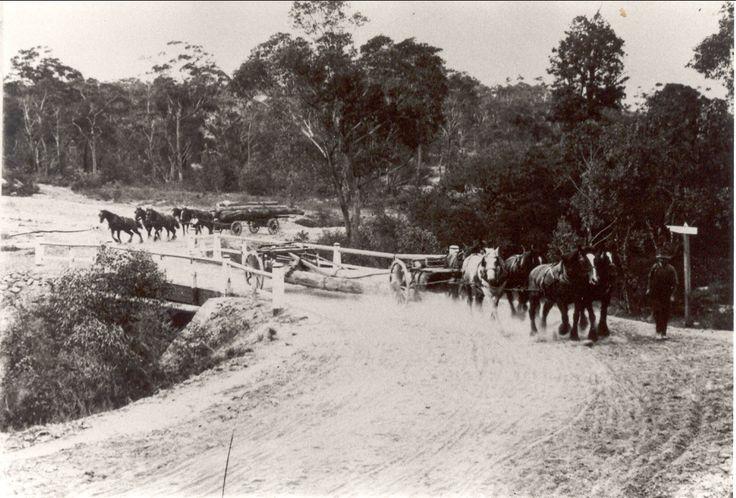 Beecroft Road crossing Devlin's creek