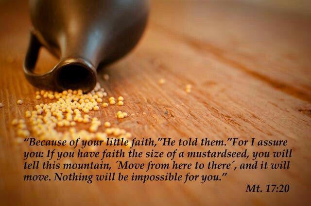 Mt 17:20