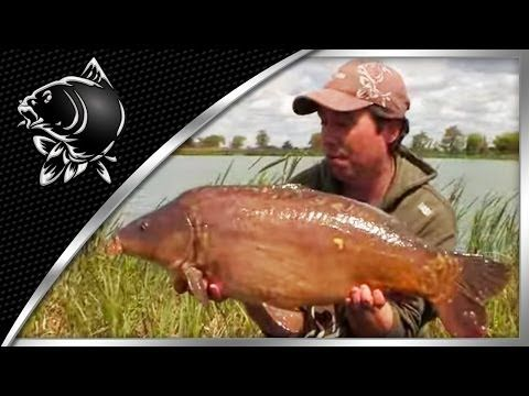 CARP FISHING TIPS - DAY TICKET SUCCESS WITH RICH WILBY - EN ITA NL DE PL DE SUBTITLES - NASH TACKLE - (More info on: https://1-W-W.COM/fishing/carp-fishing-tips-day-ticket-success-with-rich-wilby-en-ita-nl-de-pl-de-subtitles-nash-tackle/)