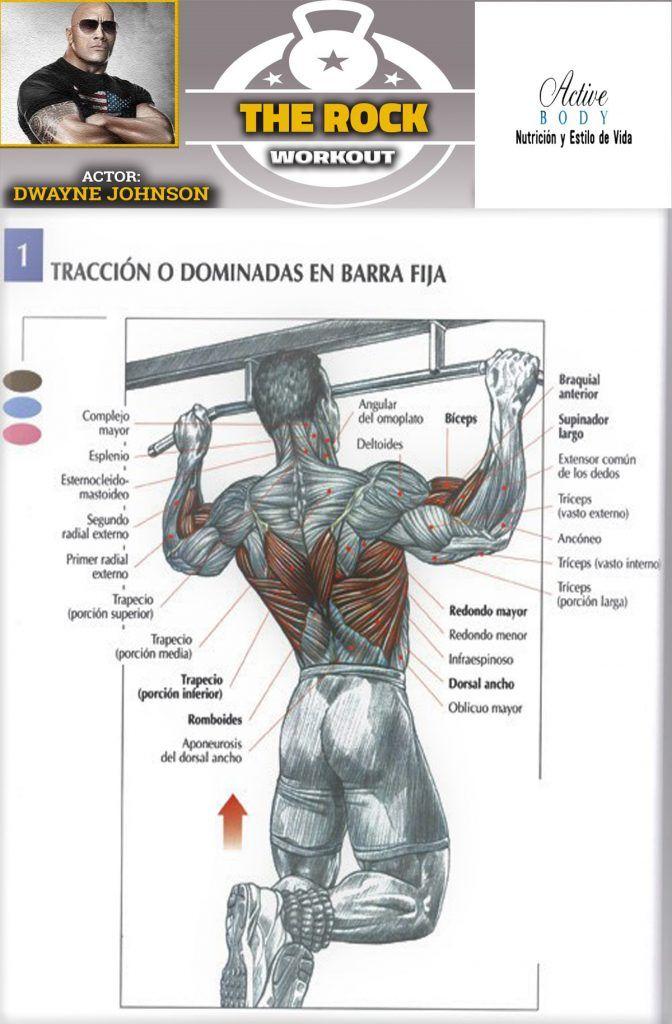 Tracción O Dominadas En Barra Fija The Rock Workout Gym Tips Gym Workouts