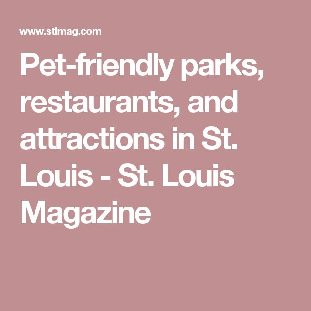 Pet-friendly parks, restaurants, and attractions in St. Louis - St. Louis Magazine