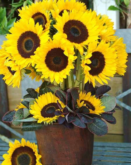 yellow flower centerpieces and beautiful table decoration ideas that include sunflowers