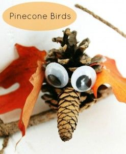 Pinecone Birds Tutorial: A Fall Nature Craft/ Blueberry Junkie