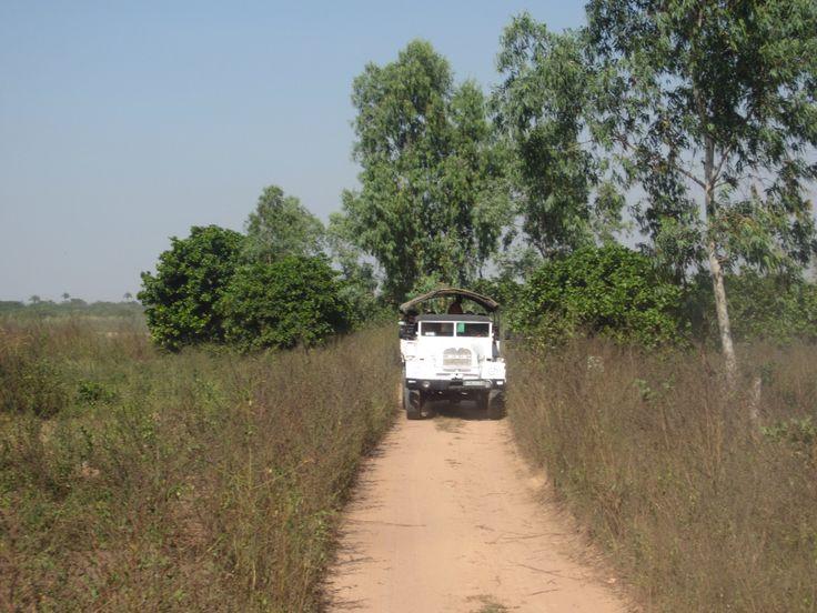 Excursie door her achterland van #Gambia