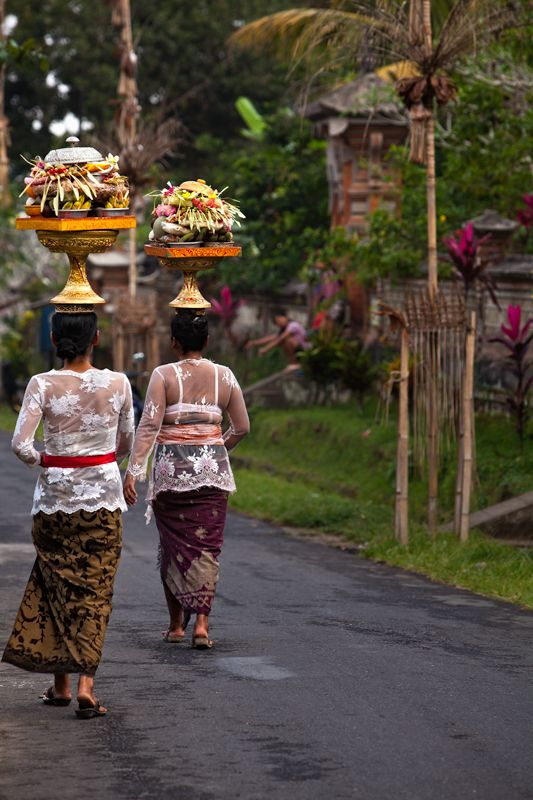 On their way to the temple with offerings - Bali, Indonesia.