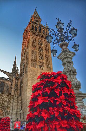 La Giralda. Sevilla en Navidad Spain