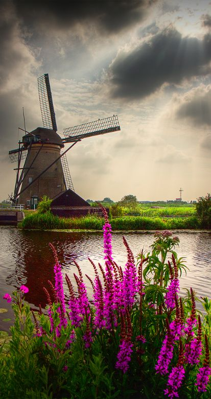 Windmill Landscape ~ Kinderdijk, Netherlands by Dollia Sheombar