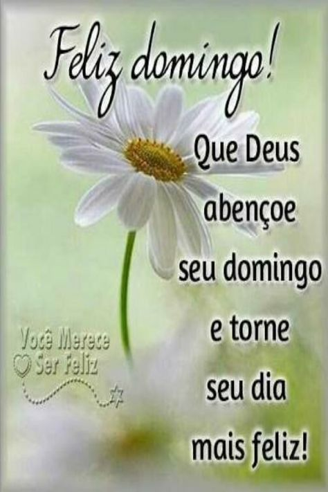 Bom Dia De Domingo Na Paz De Deus Frases Happy Week Good