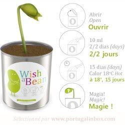 Haricot magique de la marque portugaise wish a bean vendu sur le site français www.portugalinbox.com