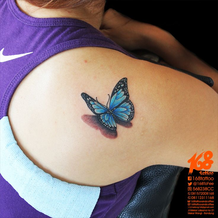3D blue butterfly tattoo on shoulder by chanlung at 168 tattoo studio