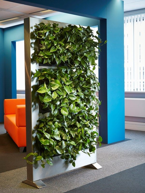 A great way to break up a space using the LiveDivider