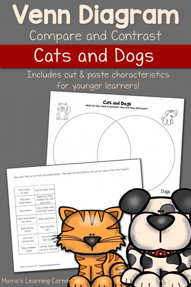 Professional essay write dog dog