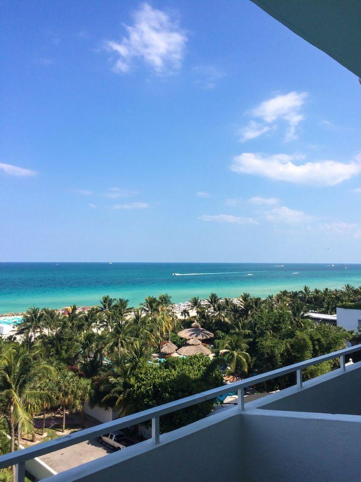 Miami: Sun, Summer, Rawfood. Vegan Paradise in Florida..