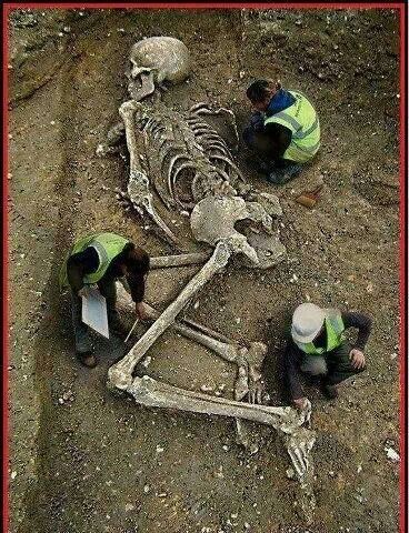 Skeleton - The Nephilim (offspring of the fallen angels & daughters of men)-Giants Hiding In Plain Sight?
