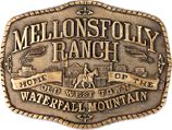 Mellonsfolly Ranch is home to the Old West Town, an authentic western town situated on the Central Plateau of the North Island.