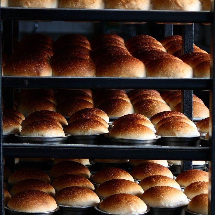 Esta semana vuelve a ser limitada el pan para hamburguesa vuelve a ser el protagonista esta vez quise hacer un pequeño cambio una fermentación mas larga además de las pequeñas modificaciones que se hicieron a la amasadora principal de #LabPanComido